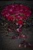 Flower-Art-Award2013-エキシビジョン作品『One-Life』出品004