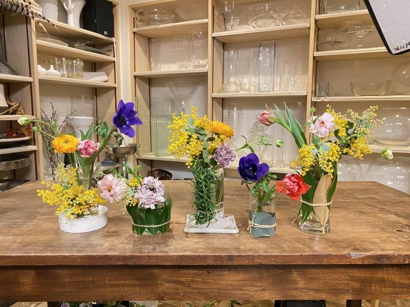 1.24-NHK「趣味の園芸」出演-テーマ「春の庭の花」