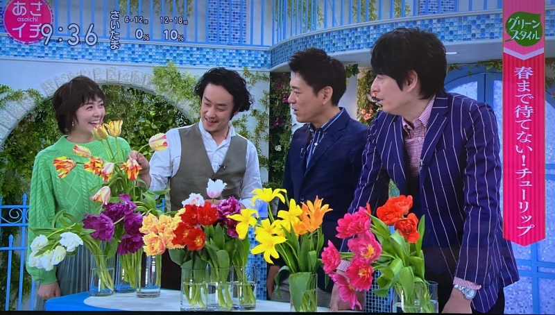 2.6-NHK「あさイチ」出演「チューリップ」02